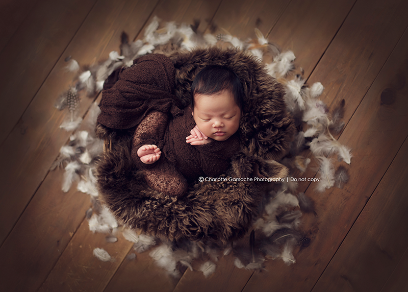 Newborn photography vancouver new born props feathers basket neutral tones sleeping baby bonnet bundled up wrapped up professional new born