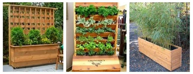 small patio vegetable garden ideas patio vegetable garden top 25 ideas about small vegetable gardens on - Small Patio Vegetable Garden Ideas