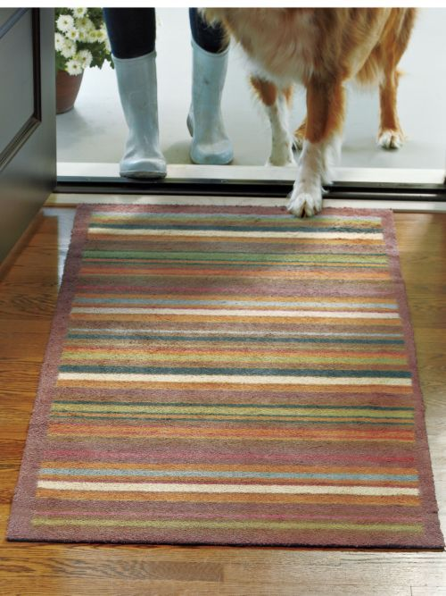 Foyer Rug Kit : Back door rugs ideas
