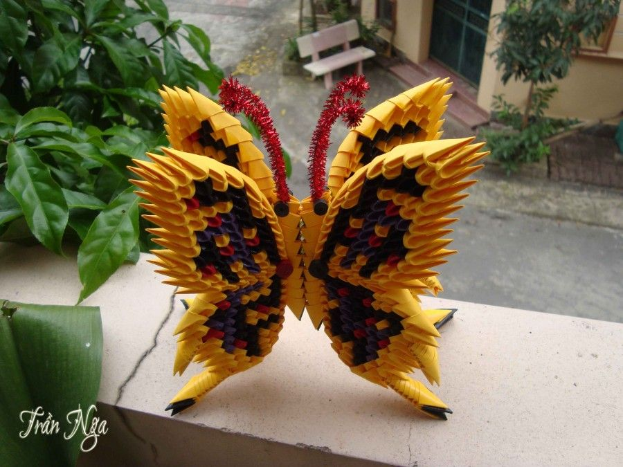 Photo of 3d origami butterfly… | Album | Nga | 3D Origami Art