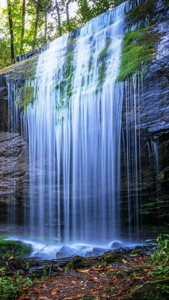 59 Amazing Mysterious Waterfall Landscapes Waterfall Natural Landscape Water Resources Famous Wat Waterfall Landscape Forest Waterfall Waterfall Photography