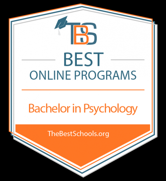 10 Things You Should Know About Online Psychology Degree Online