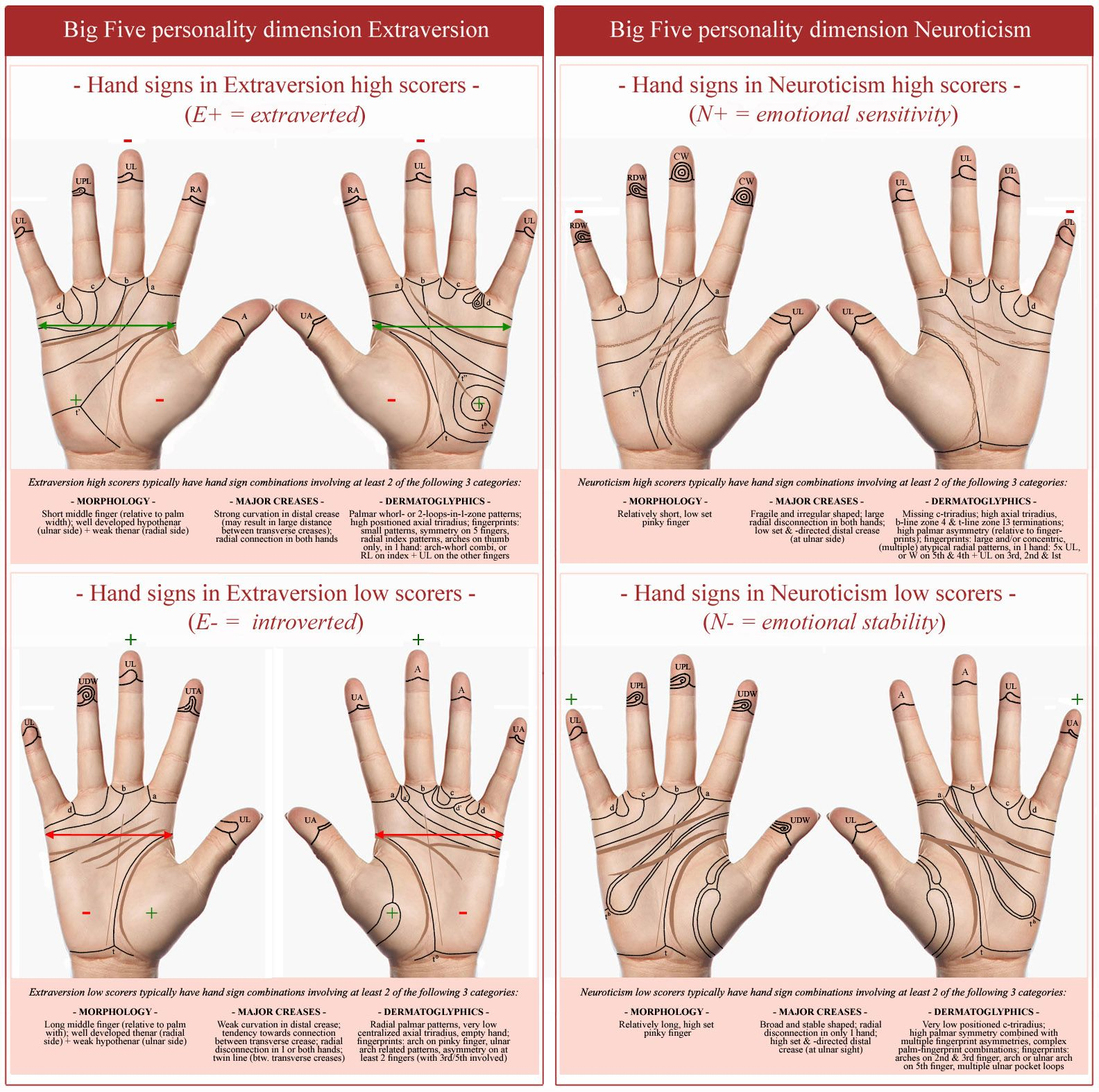 Hand Reading Research Scientific Hand Analysis Palm Reading