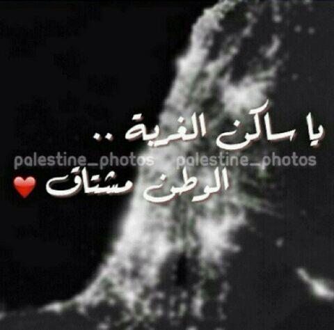 الوطن مشتاق وانا مشتاق وانت مشتاق Palestine Gaza Photo