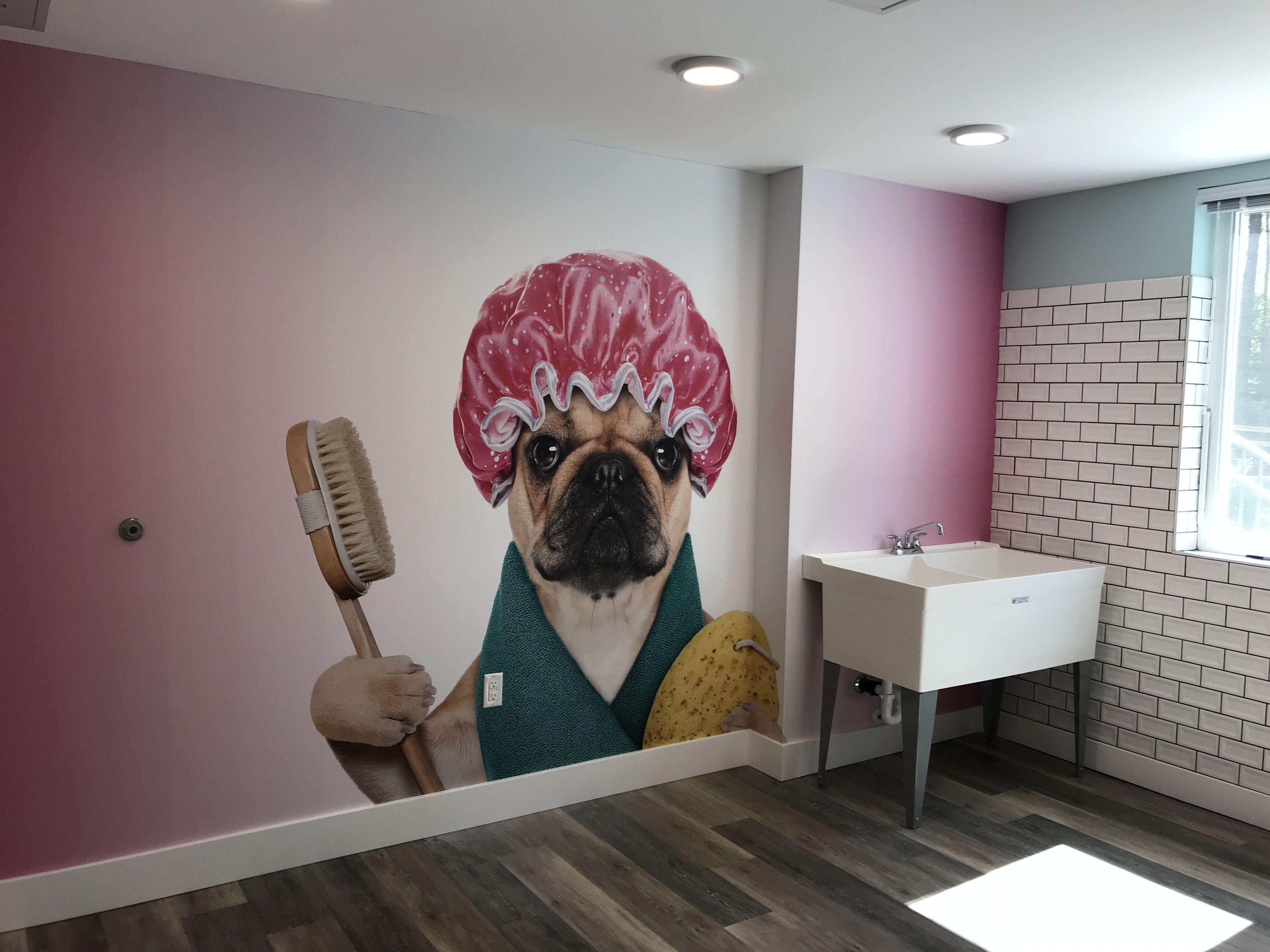 Dog Wash Station Pet Care Design Dog Wall Mural Dog Wall Decor Dog Wash Mural Wallpaper