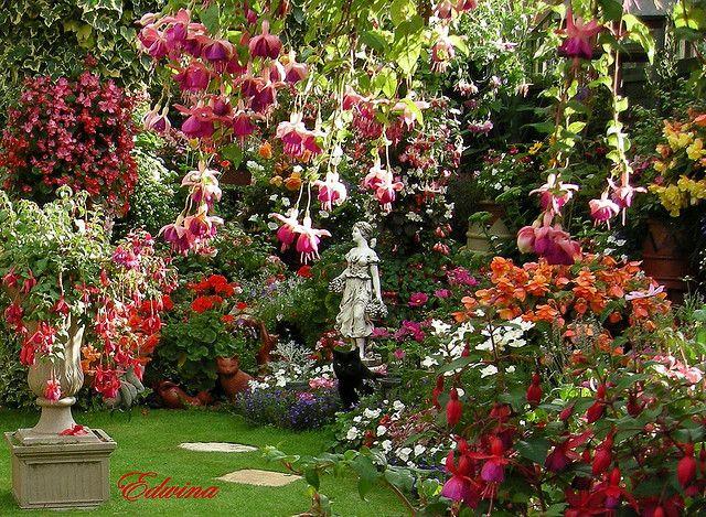 Past Fuchsia Beautiful Gardens Dream Garden Cottage Garden