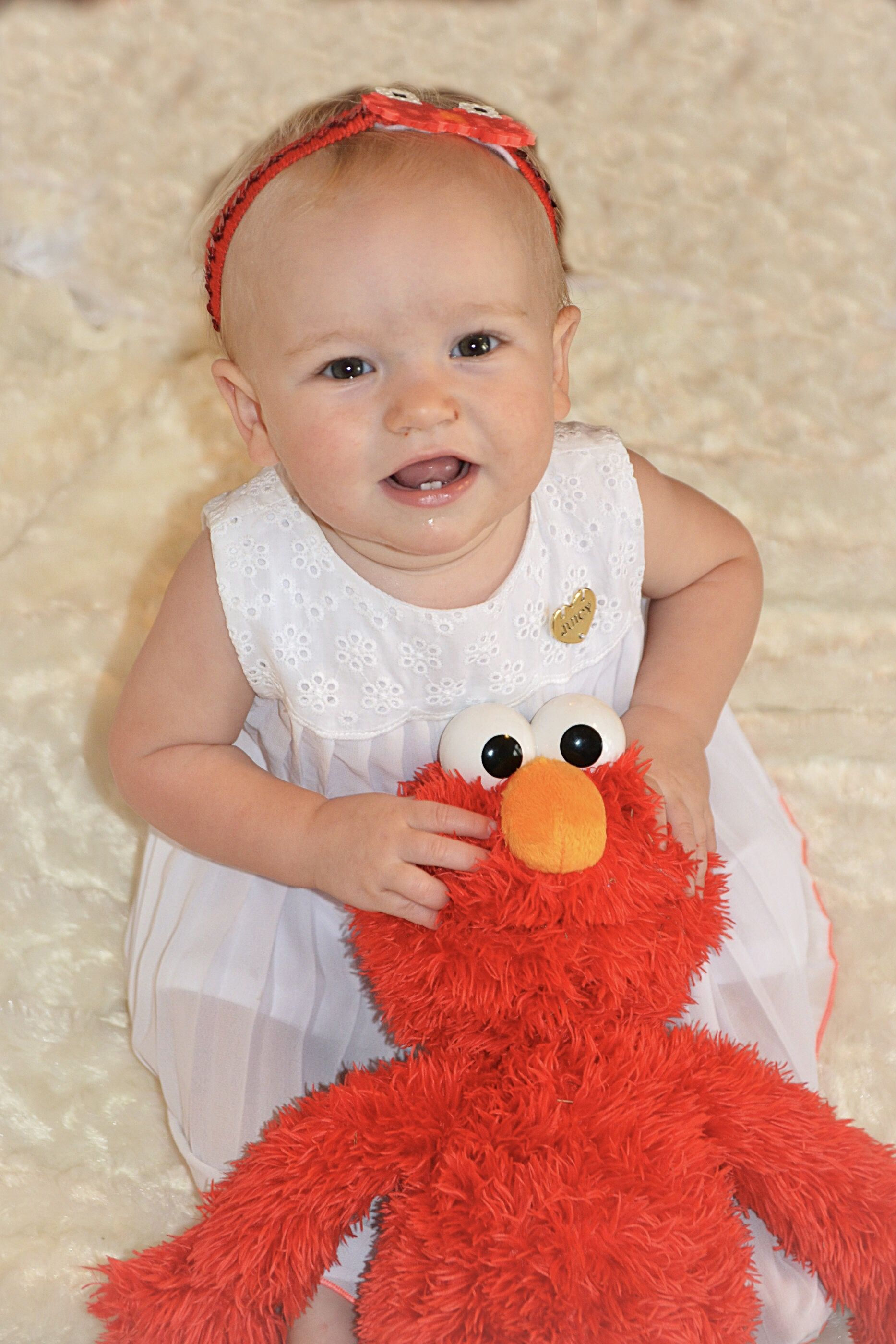 Elmo photo shoot 11 month old photoshoot katelyn murphy photography elmo photoshoot 11monthold