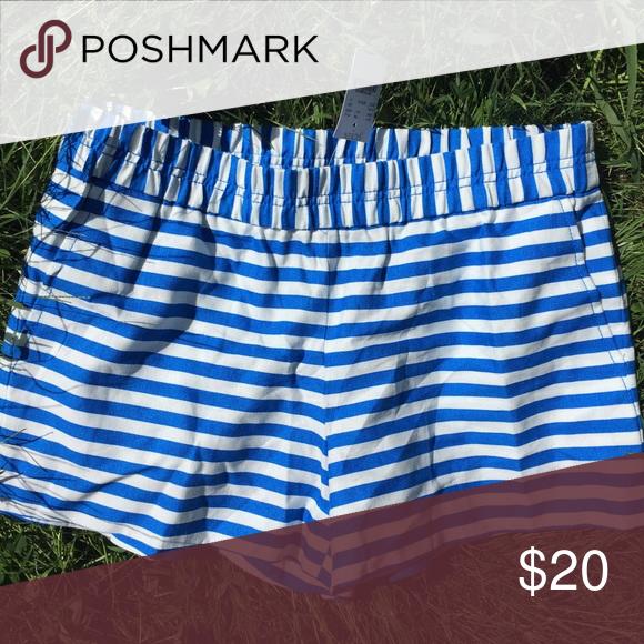 NWT J CREW Boardwalk shorts with Royal stripes Brand new J crew blue stripe boardwalk shorts J. Crew Shorts