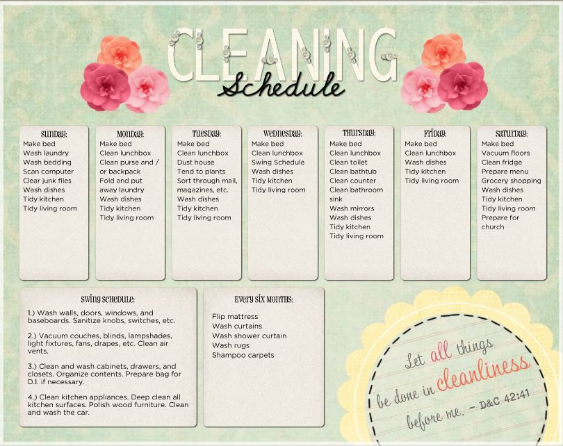 Kitchen Cleaning Schedule Template Uk  Organization
