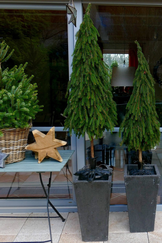 b ume aus tannenzweigen binden zahrada pinterest baum weihnachten und tannenzweig. Black Bedroom Furniture Sets. Home Design Ideas