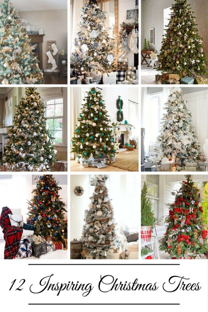 12 Gorgeous Christmas Trees sure to Inspire Christmas tree and What s