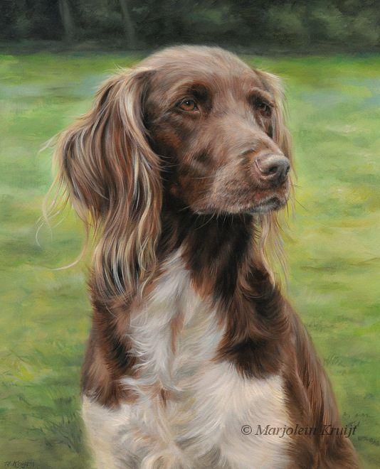 Pet Portraits Paintings Cats And Dogs By Hond Kunst Huisdier Portretten Hond Tekeningen