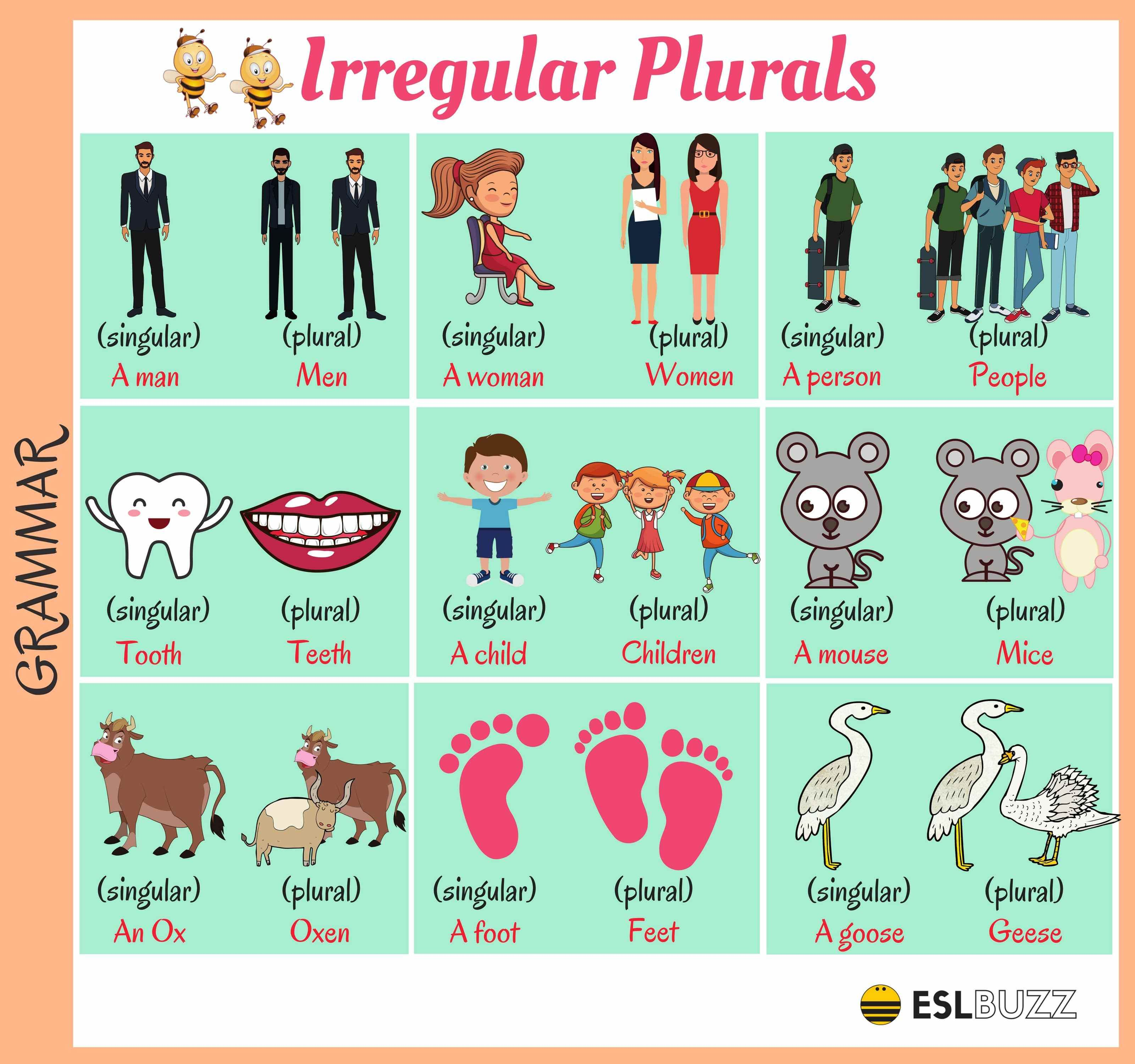 Common Irregular Plural Nouns In English