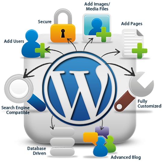 Hire Dedicated Wordpress Developer We provides Wordpress Development ...