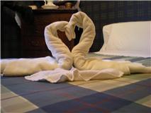 Les cygnes vous saluent lorsque vous entrez dans votre chambre