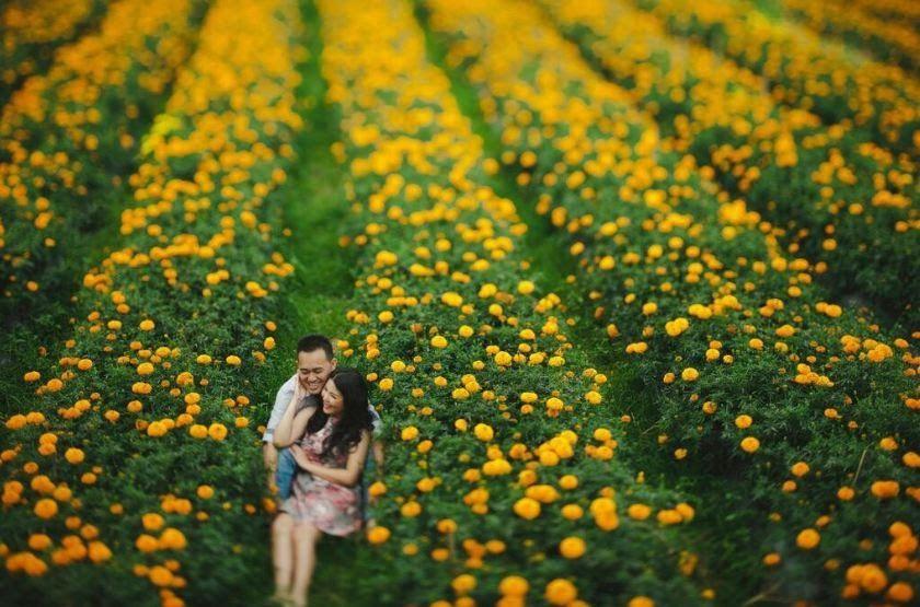 Kebun Bunga Yogyakarta