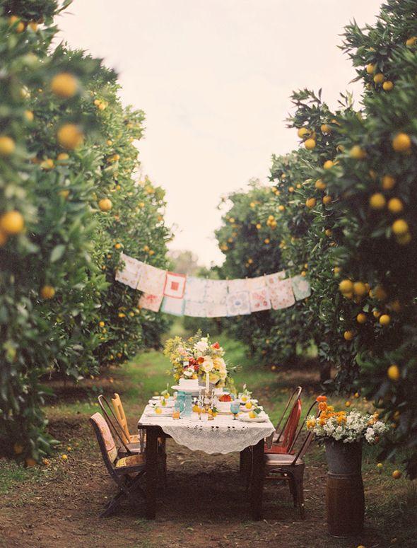 Escenario Campestre Decoracion Vintage Outdoor Dinner Parties Outdoor Dinner Garden Party
