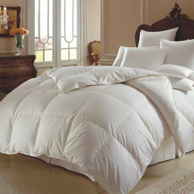 Alwyn Home Hazelwood Winter Down Comforter | Wayfair