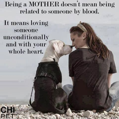 Being A Mother Doesnt Mean Being Related To Someone By Blood Dogs