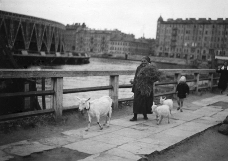 Ленинград 1920 г. | Фотографии, Путешествия, Картинки