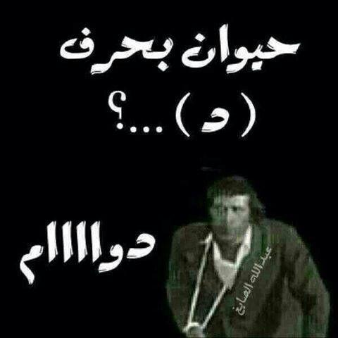 حيوان بحرف ال د Funny Arabic Quotes Arabic Funny Cool Words