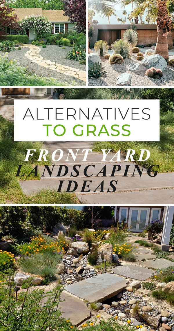 Alternatives to Grass : Front Yard Landscaping Ideas ...