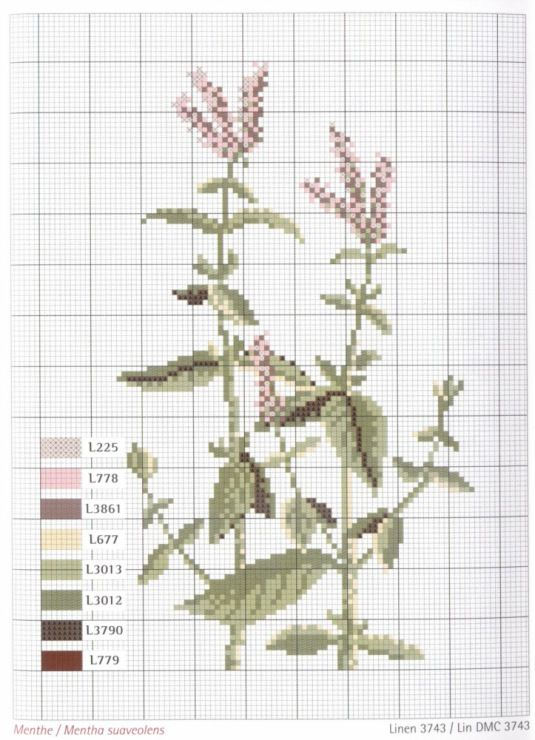 Gallery.ru / Fotók # 1 - Herbier - Mongia | Bricolaje y manualidades ...