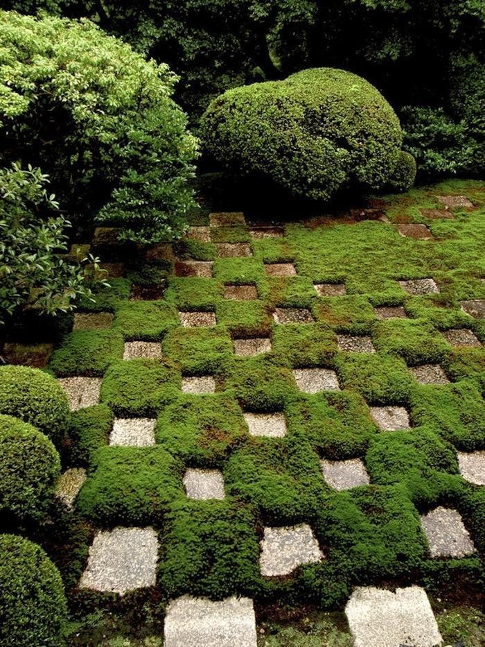 Ask The Expert: 7 Tips For Making A Moss Checkerboard