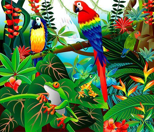 Loros Y Ranas En Selva Tropical Con Imagenes Selva Dibujo