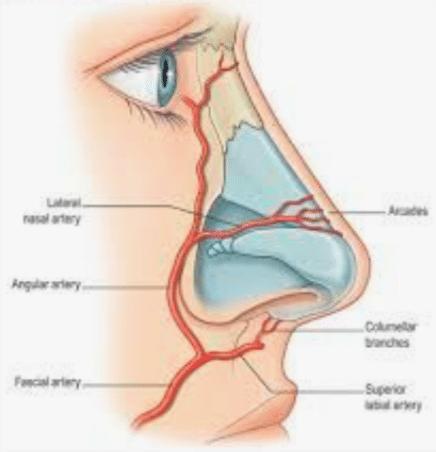 venas láser en la nariz