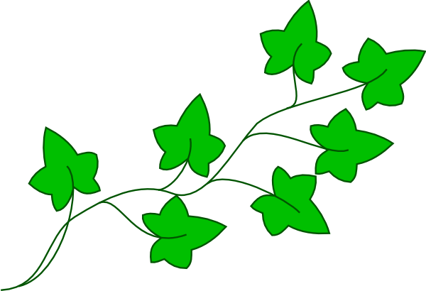 Ivy Vine Clip Art At Clker Com Vector Clip Art Online