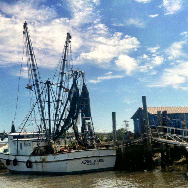 Shrimp Boats Bringing In That Delicious Georgia Shrimp