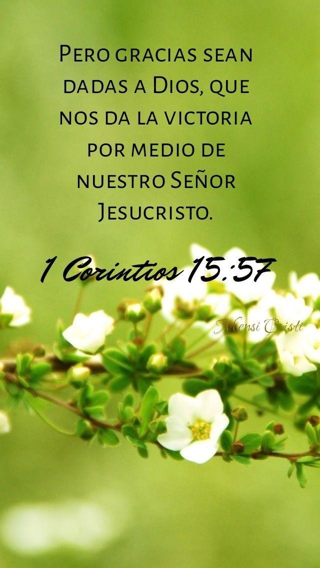 Fotos En Mensi Cristi VersÍculo Diario