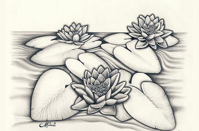 24 Gambar Mewarnai Bunga Raflesia Koleksi Bunga Hd