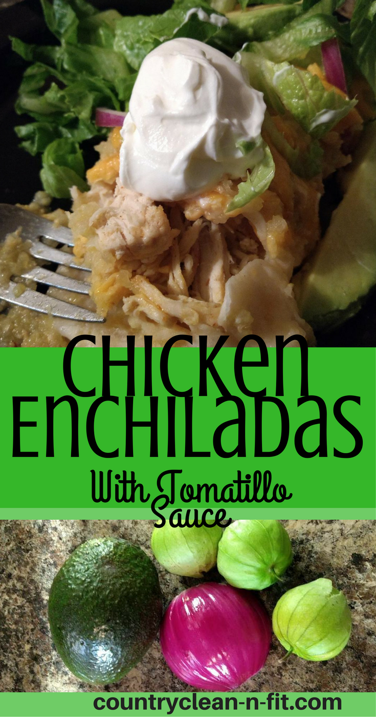 Homemade recipe for chicken enchiladas with tomatillo sauce whole homemade recipe for chicken enchiladas with tomatillo sauce whole ingredients easy to follow recipes forumfinder Image collections