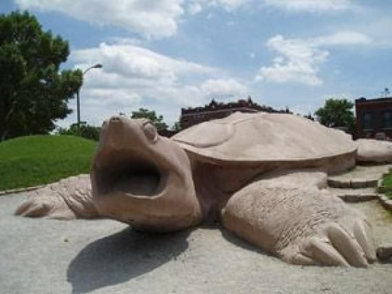 turtle playground travel st louis zoo family fun places playground. Black Bedroom Furniture Sets. Home Design Ideas