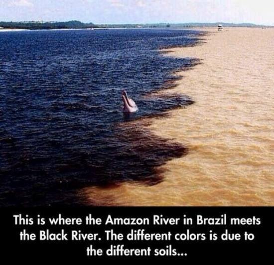 That's pretty cool!