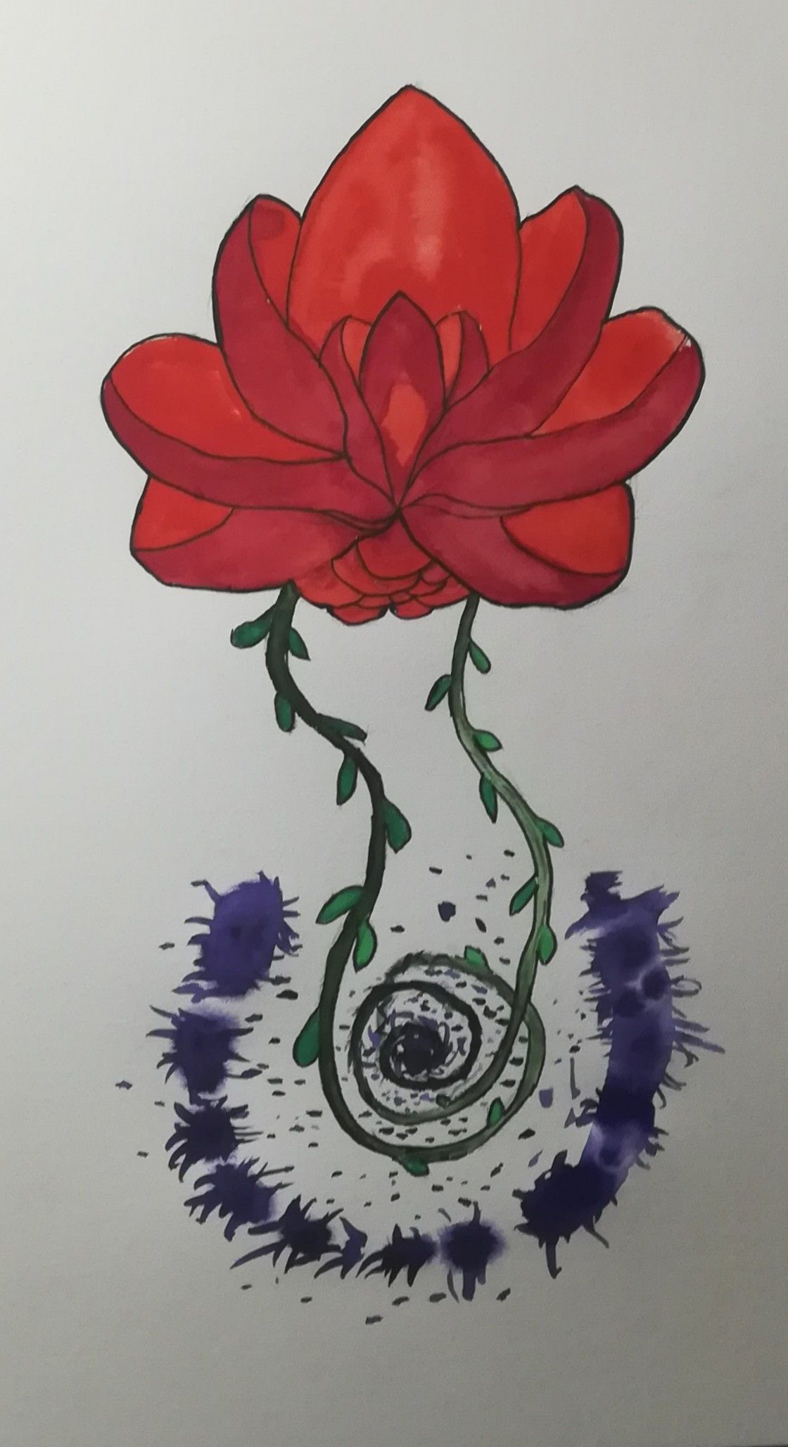 water color/aquarelle drawing of lotus flower with vines