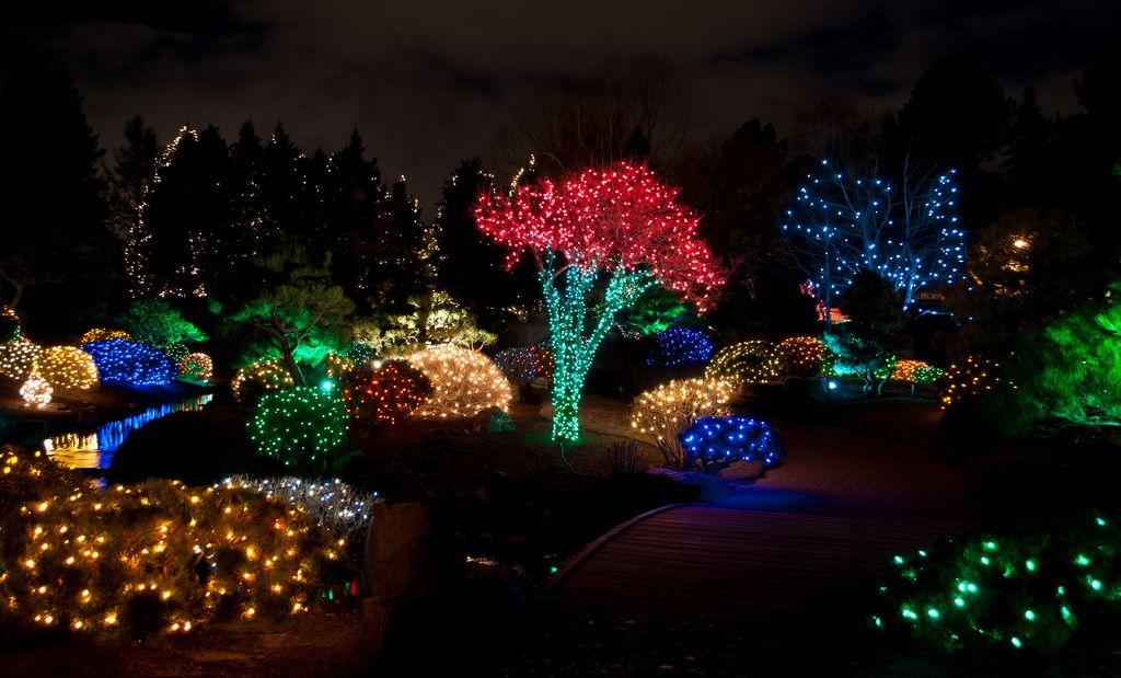 Blossoms of Light in the Denver Botanic Gardens Outdoor