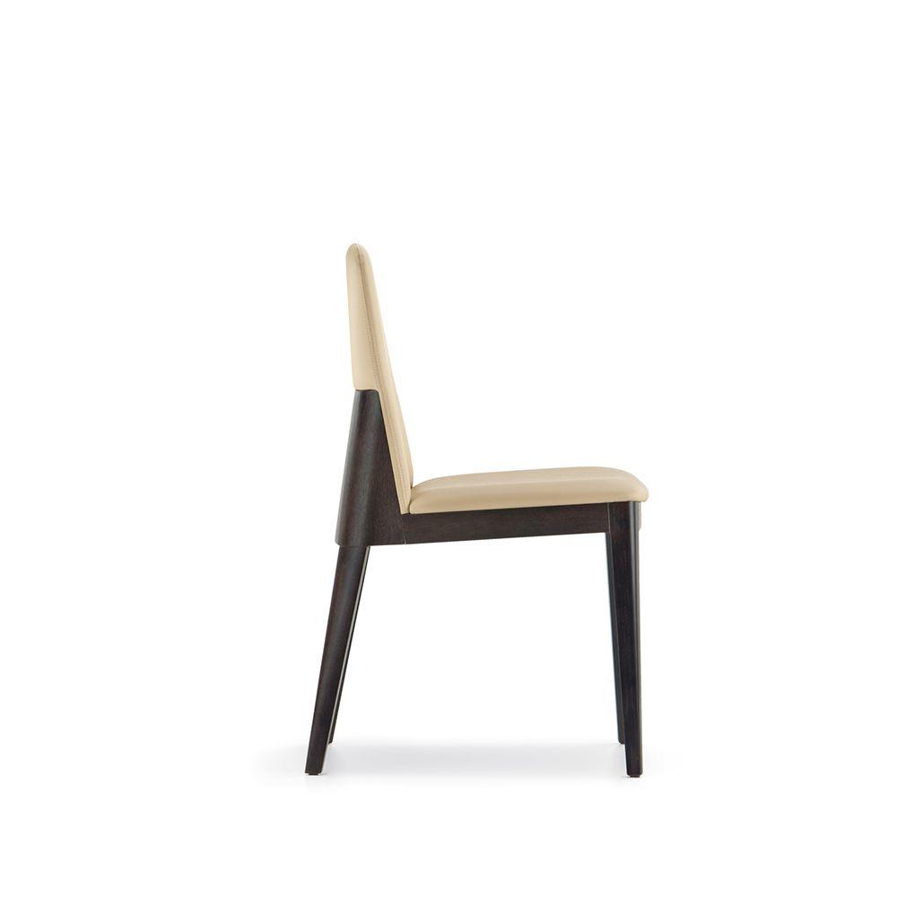 Allure Modern Wood Chair  The Chair Market  Wood chair, Modern