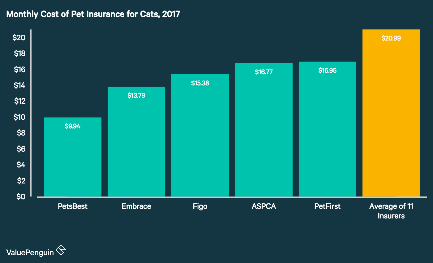 A Z On Pet Insurance How Much Does Pet Insurance Cost Per Month