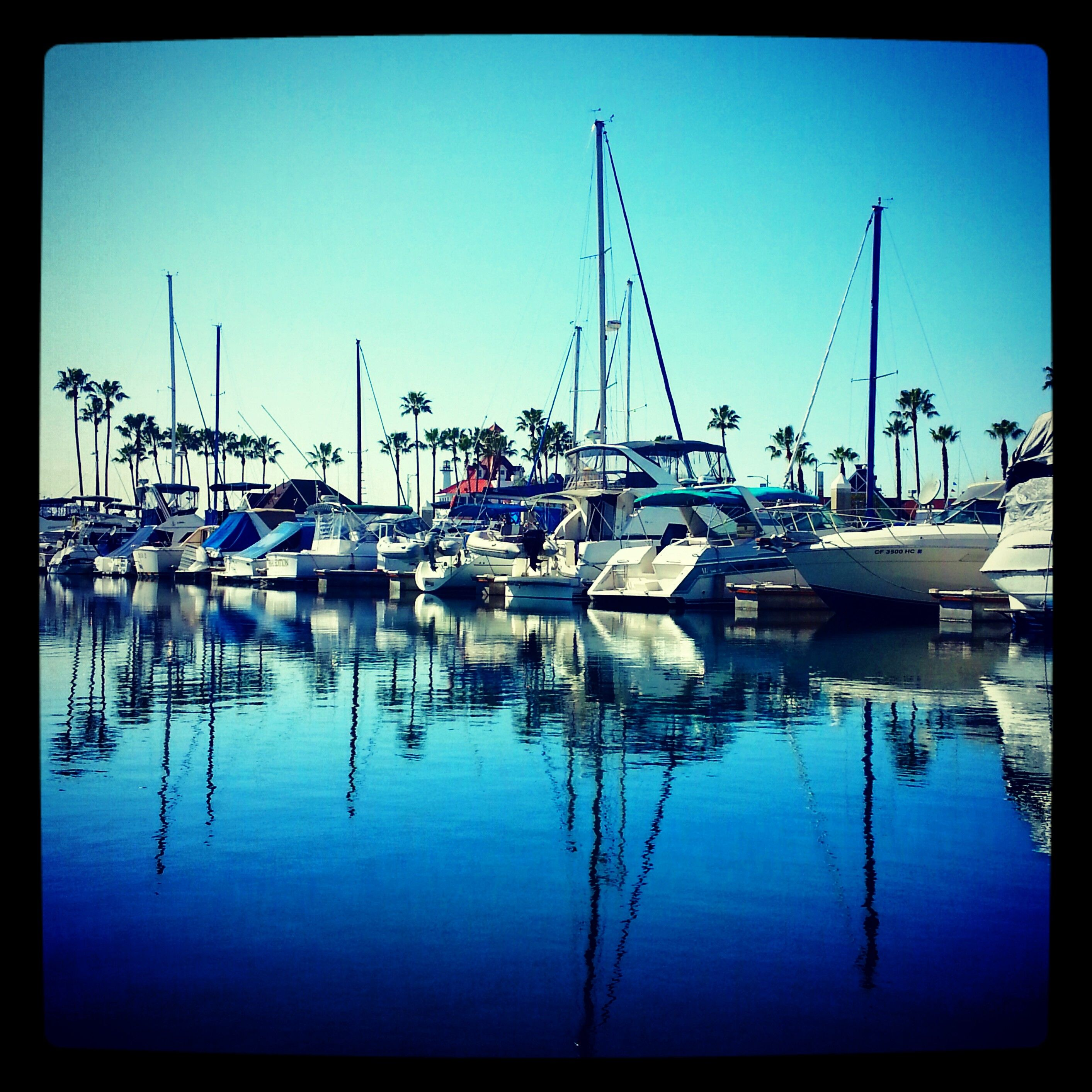 Long Beach Yacht Club San Francisco Skyline Beautiful Pictures Places Ive Been
