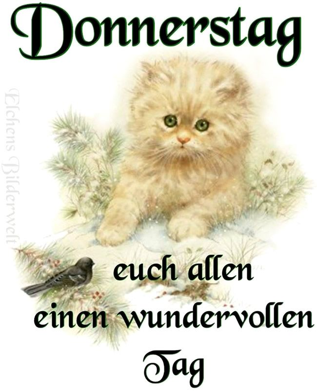 Happy Donnerstag