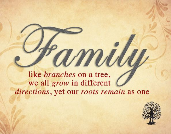 Family like branches on a tree, we all grow in different
