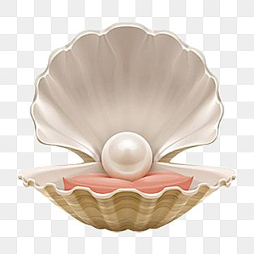 Beautiful Hand Painted Pearl Shell Png Element, Pearl Clipart, Pearl, Decorative Element PNG Transparent Clipart Image and PSD File for Free Download