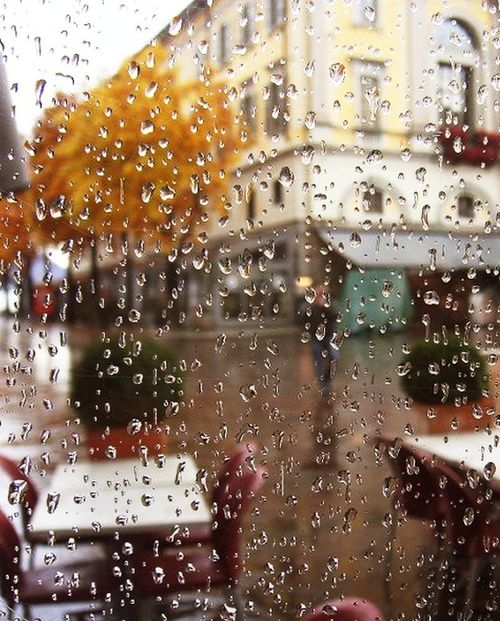 Sitting inside a wonderful cafe and looking out at the rain.