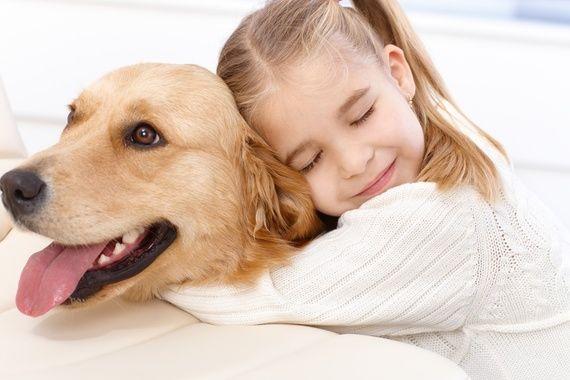 Perros para ninos asmaticos
