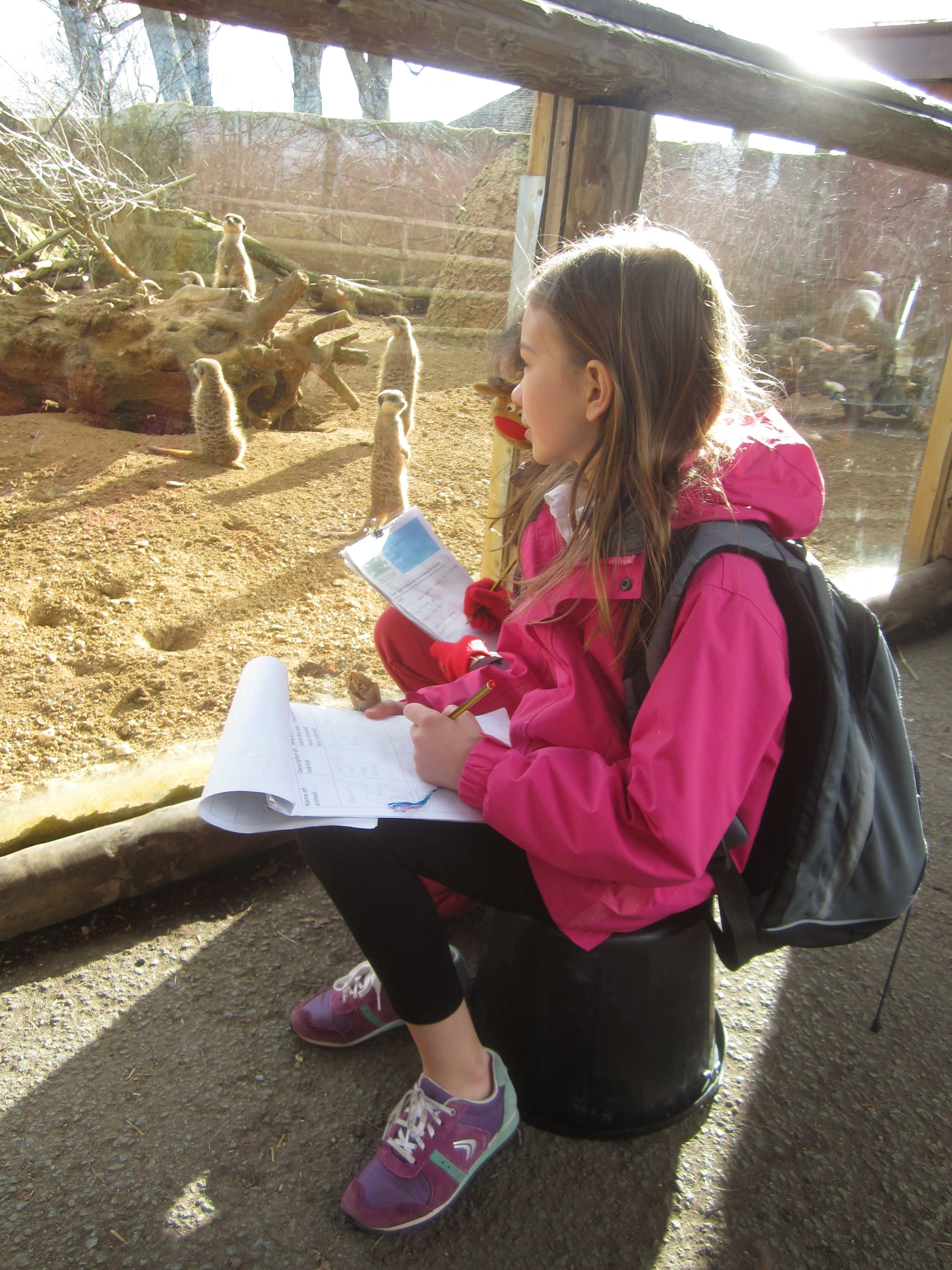 Bucket School at the zoo! Observing animals and designing environmental enrichment for the enclosures.