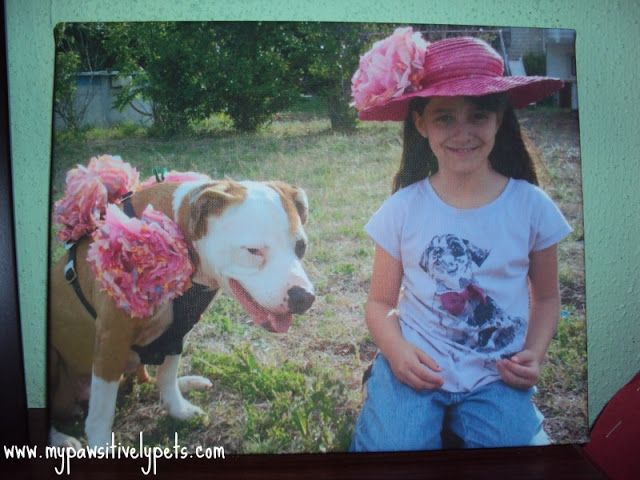 Enter to win - free 8x10 photo print from Easy Canvas Prints - $44.71 value