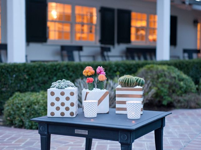Have the itch to get crafty after all those creative DIY planters we posted? This ought to solve that! We have an easy DIY for you today to make planters using cacti and one of our favorite materials - gold paint.